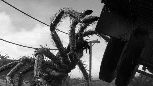 Tarantula 1955 – Download Game  Free Game Planet